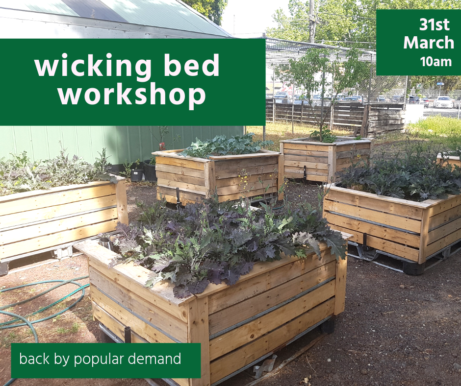 Back by popular demand. Learn and build wicking bed in this workshop with Very Edible Gardens.